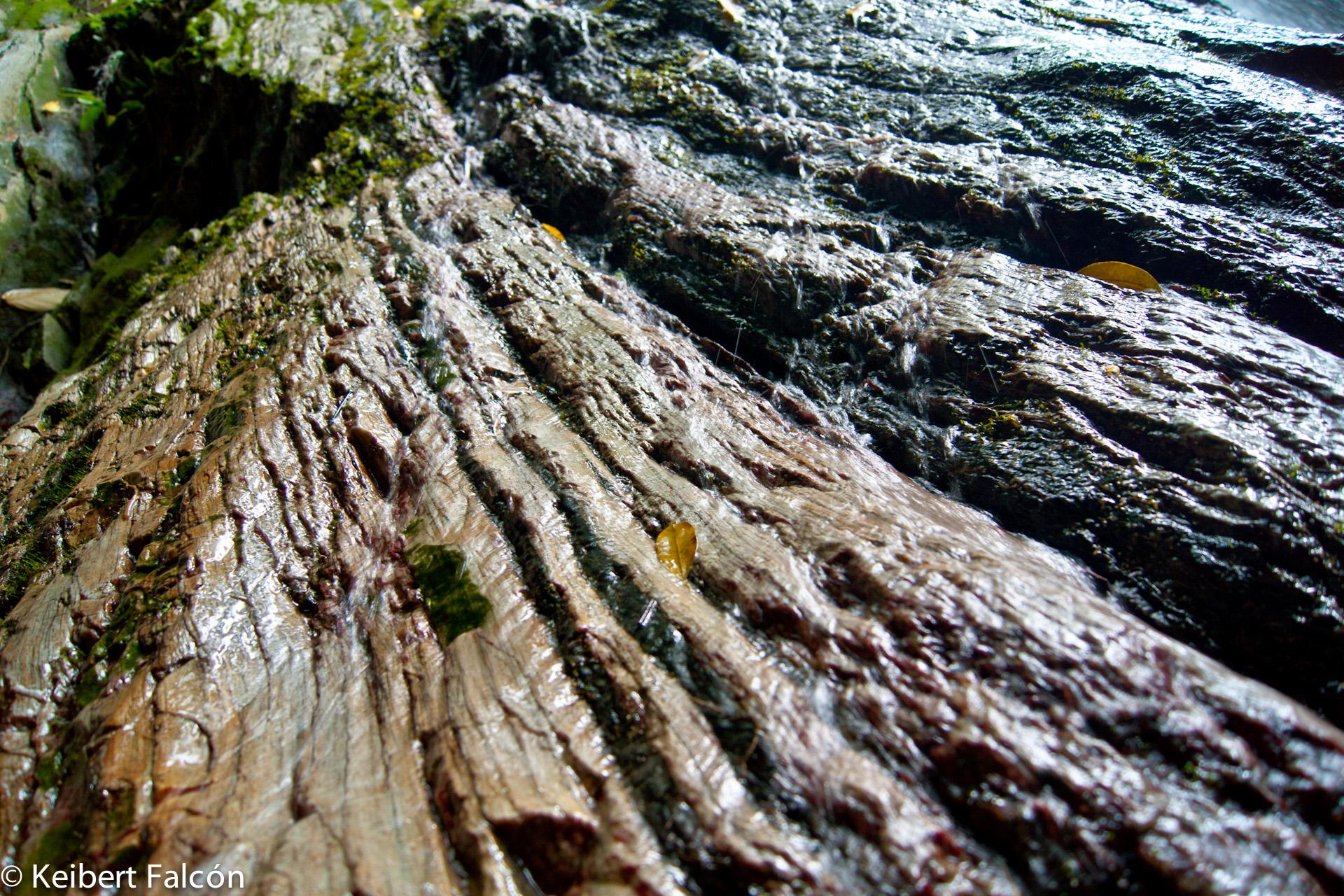 Quebrada Quintero – Lugar para liberar tus oídos del estrés continuo de la ciudad